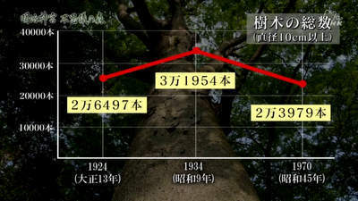 m_jingu (14).jpg