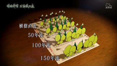 m_jingu (5).jpg